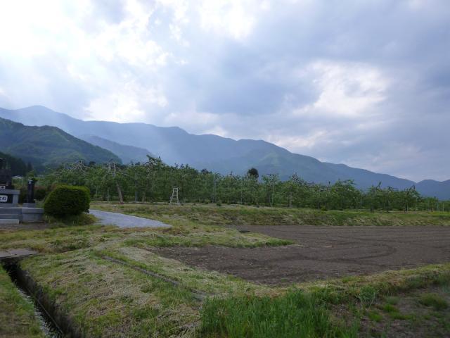 hannkamisawa2 (7)