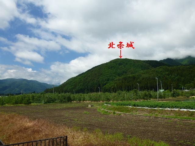 honnkamisawa45 (4)