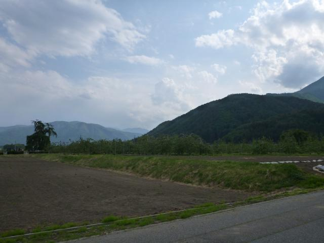 honnkamisawa45 (8)