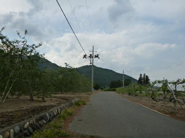 ynagisaka3 (9)