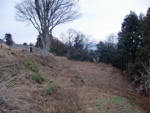 nakamurayakata5 (12)