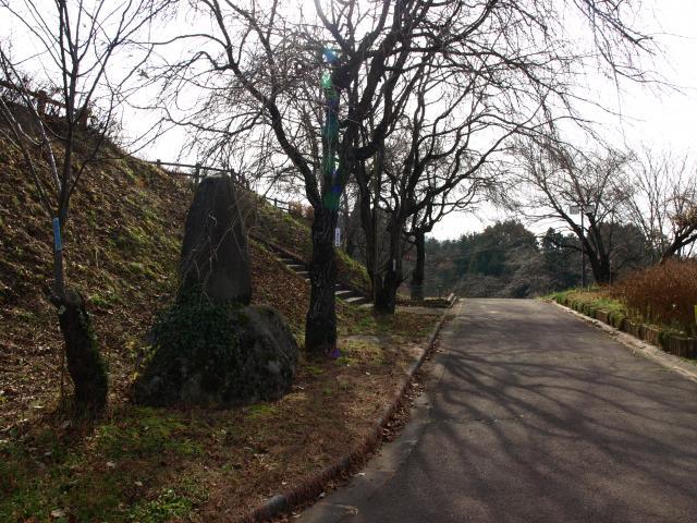nakagawaookusasiro2 (4)