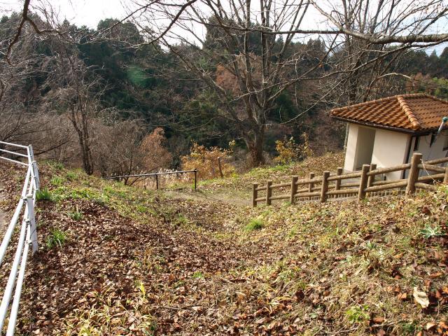 nakagawaookusasiro5 (2)