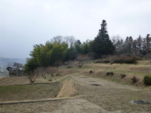 okita (6)