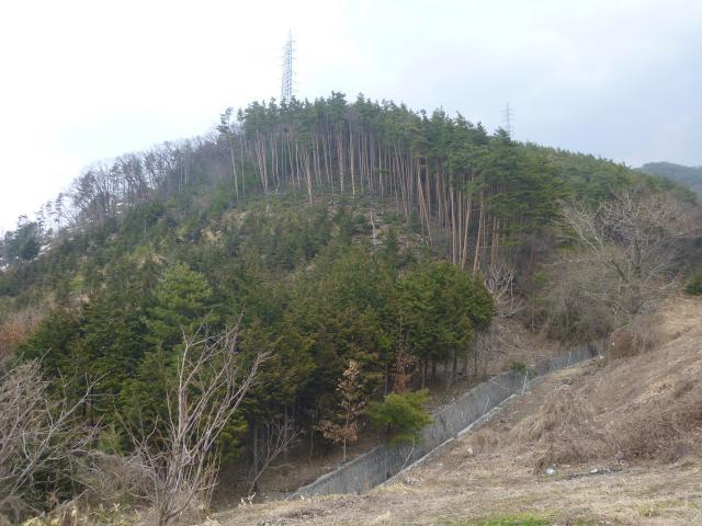 kisenozyouyama1 (7)