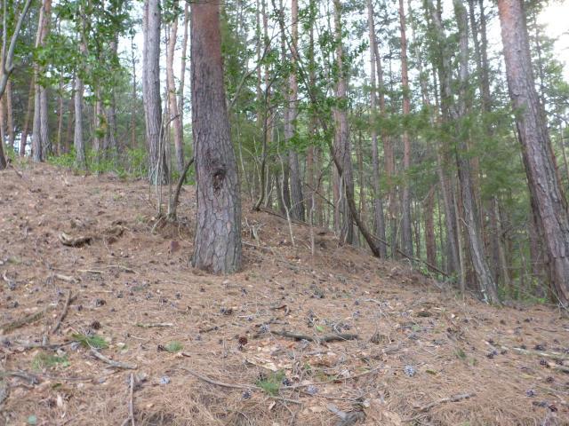 kisenozyouyama4 (5)