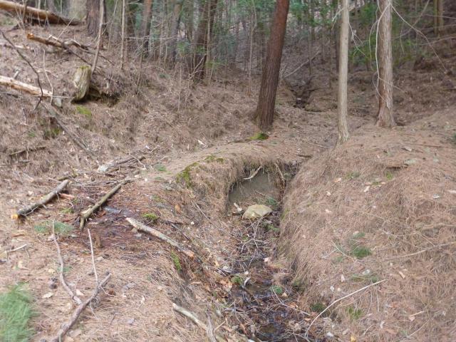 kisenozyouyama3 (3)