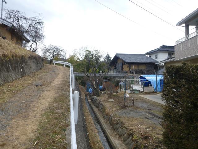 nakazawatakamisirro1 (3)