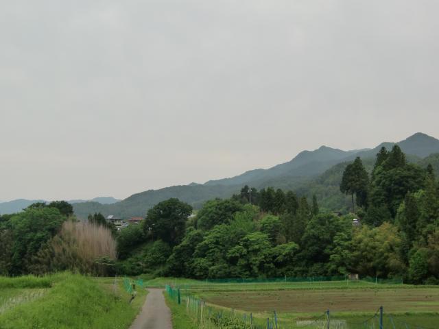 nakazawatakamisiro5 (2)