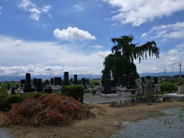 hannkamisawa1.jpg