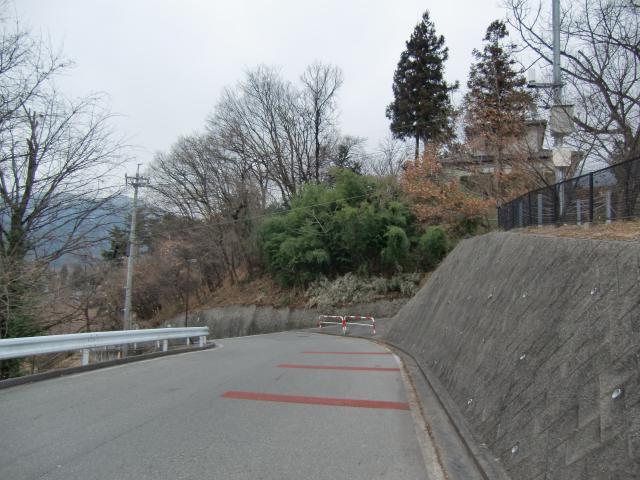 sakurasakagami1.jpg
