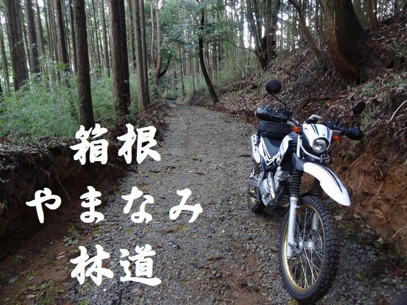 s-DSC078972.jpg