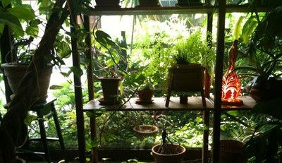 カフェモール窓