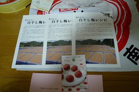 紀州田辺の梅干し04