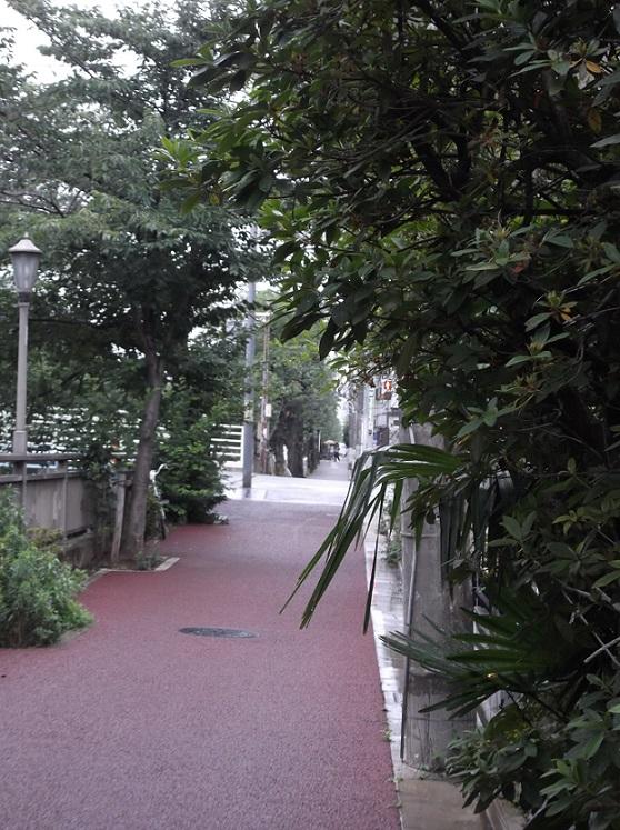 石神井川の沿道