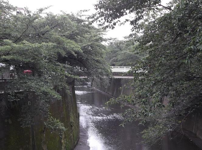石神井川41