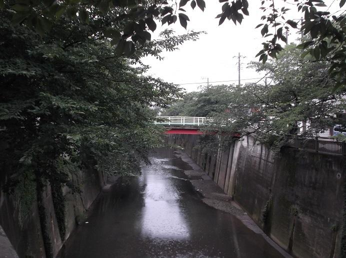 石神井川43