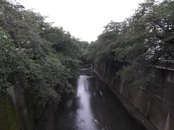 石神井川45