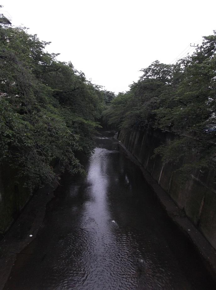 石神井川46