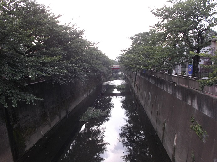 石神井川97