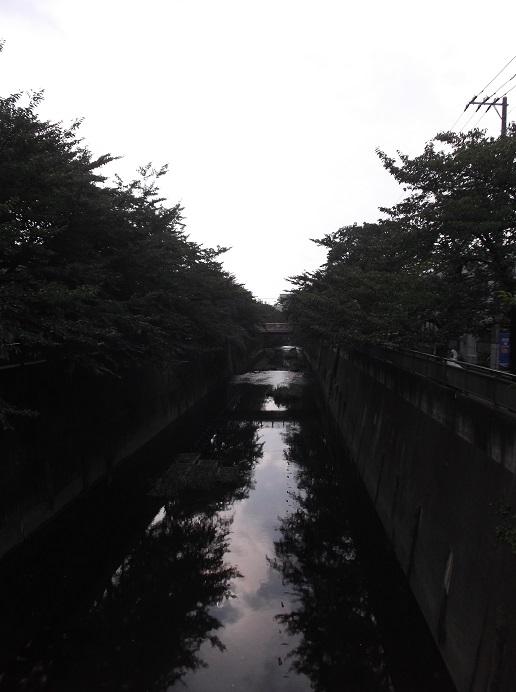 石神井川98