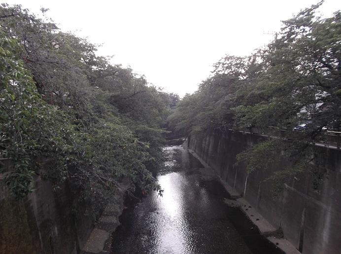 石神井川99
