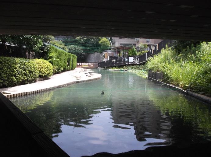 釣り堀公園92