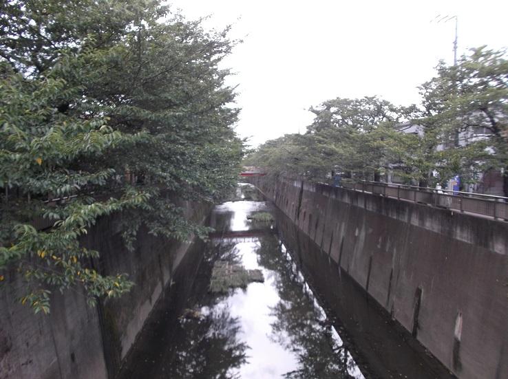 石神井川151