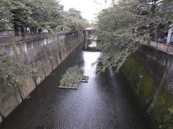 石神井2362