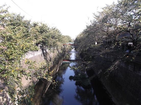石神井2511