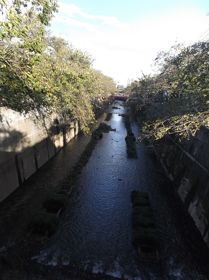 石神井2617
