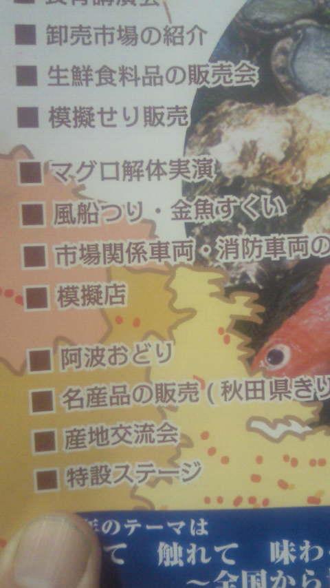 NEC_0002_20131031205059198.jpg