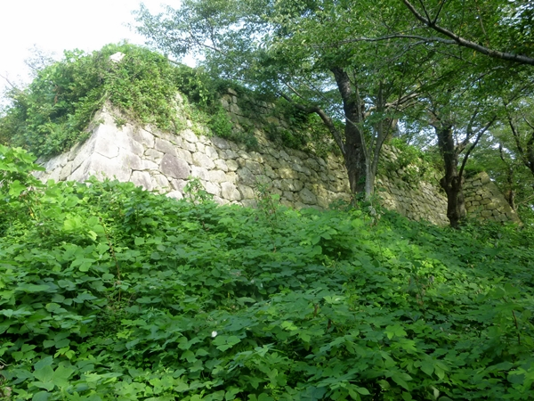 Murakami Castle