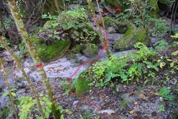 精進が滝遊歩道12