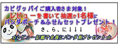 kabi_b01_01.jpg