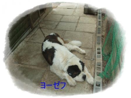 DSCF0572.jpg