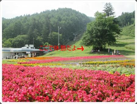 IMG_0139_20130817020123fe1.jpg