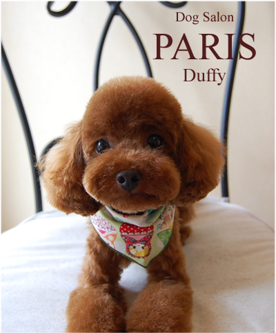 duffy2013sep.png