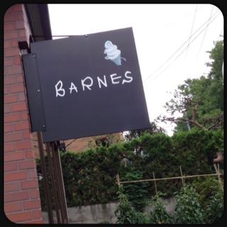 __BARNES.jpg