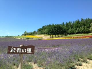 __furano.jpg