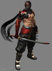 ninja_gaiden_3_razors_edge-2192913.jpg