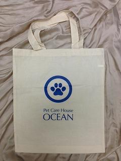 eco-bag.jpg