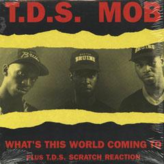 HH_TDS MOB_201401
