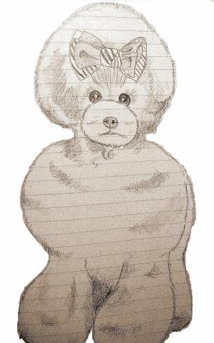 犬 ぷ-2