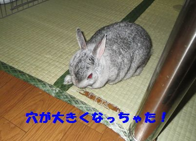 sa-ko 20130917 001