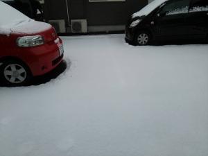 2.8朝 雪