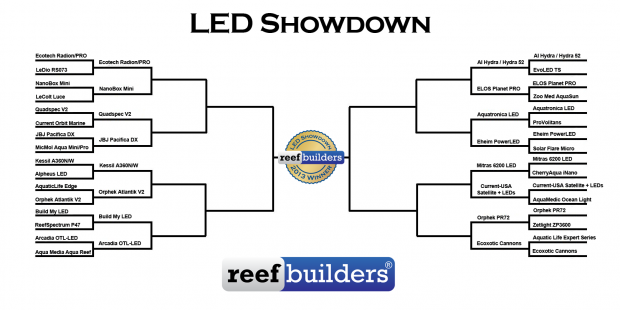 led-showdown-2013-rd2-620x310.png