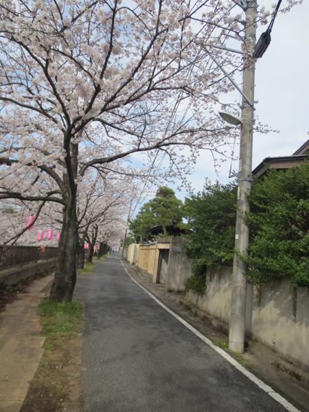 2013-03-28-23.jpg