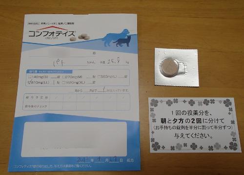 P4200050.jpg
