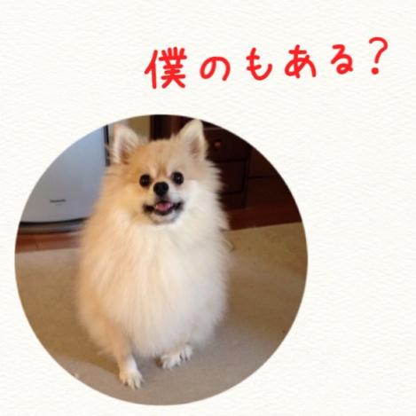 fc2blog_20140927224855644.jpg